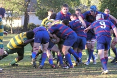 1st-XV-whole-pack-maul